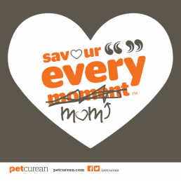 Thanks MOM - FIDO Shares The Top 5 Reasons We Love You