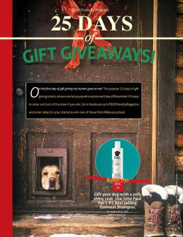 2014 25 Days of Gift Giveaways
