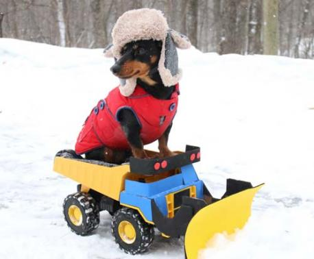 Crusoe plows snow