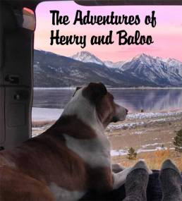 Henry and Baloo, as they take in nature's uncompromising beauty