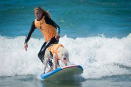 Fido Friendly surfing