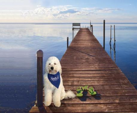 The Shallows Resort dock with dog
