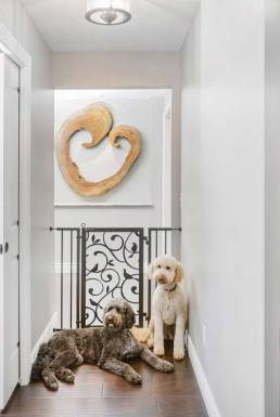 Fusion pet safety gate
