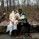No dog left behind, not at home or weddings