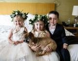 A growing number of couples are opting to include fido on their special day