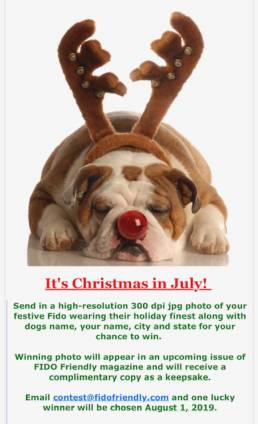 Christmas in July Contest | FIDO Friendly